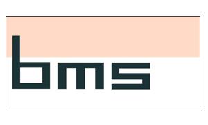 BMS Software